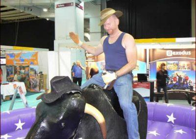 rodeo-bull-11