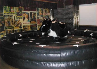 rodeo-bull-13