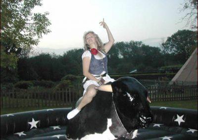 rodeo-bull-29