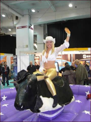 rodeo-bull-4