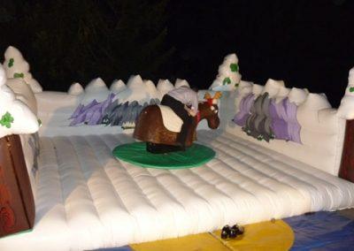 rodeo-reindeer